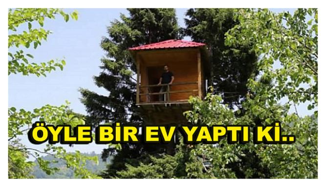 Photo of Ağacın Tepesine Öyle bir yere ev yaptı ki!